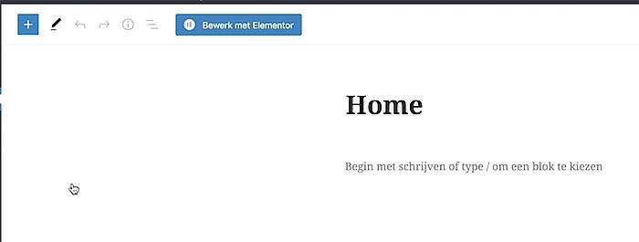 Homepage bewerken met Elementor