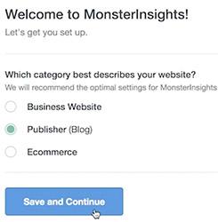 Monsterinsights categorie