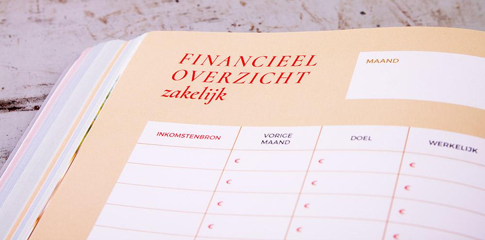 Money planner -  Simone Levie