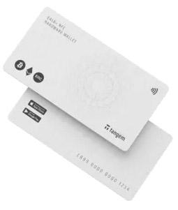 tangam card