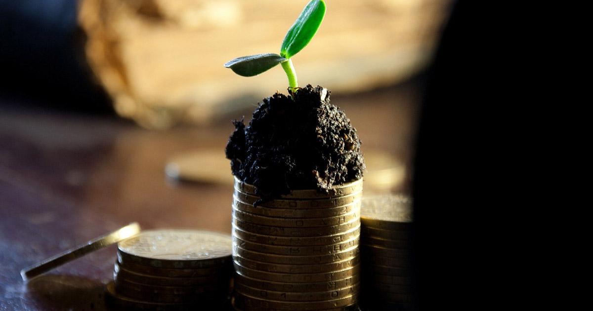 Wat is dividend en dividend beleggen?